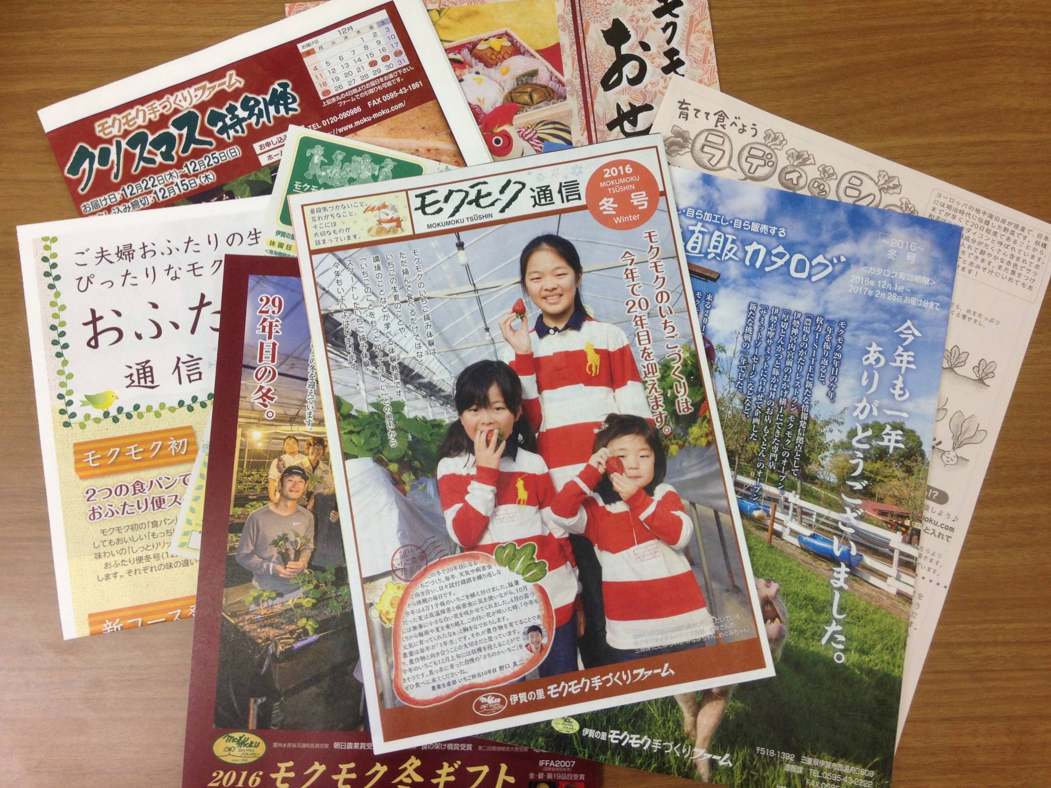 photo-11-10-16-14-22-52